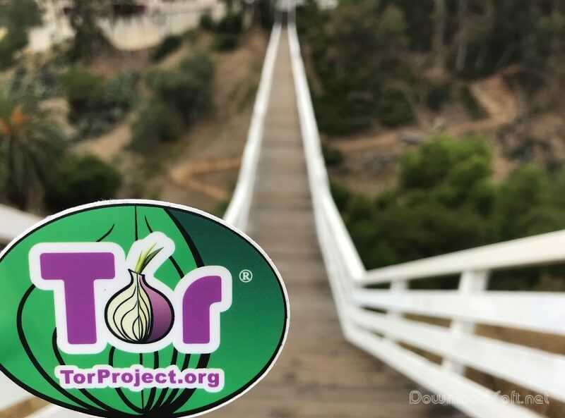 Download Tor Browser 2021 Free Protection & Safety Surf