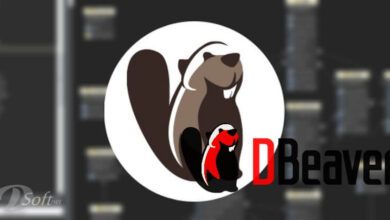 Download DBeaver Free